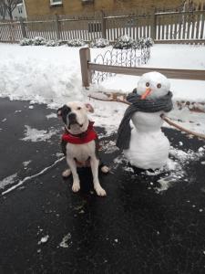 Murphy - Snowman